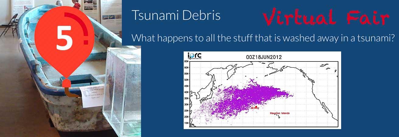 Balloon #5 Tsunami Debris
