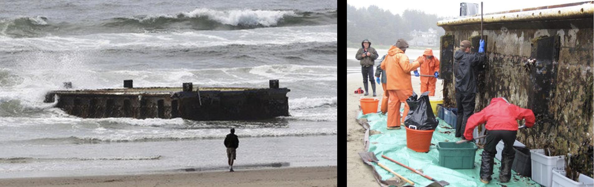 Photos of the dock tsunami debris