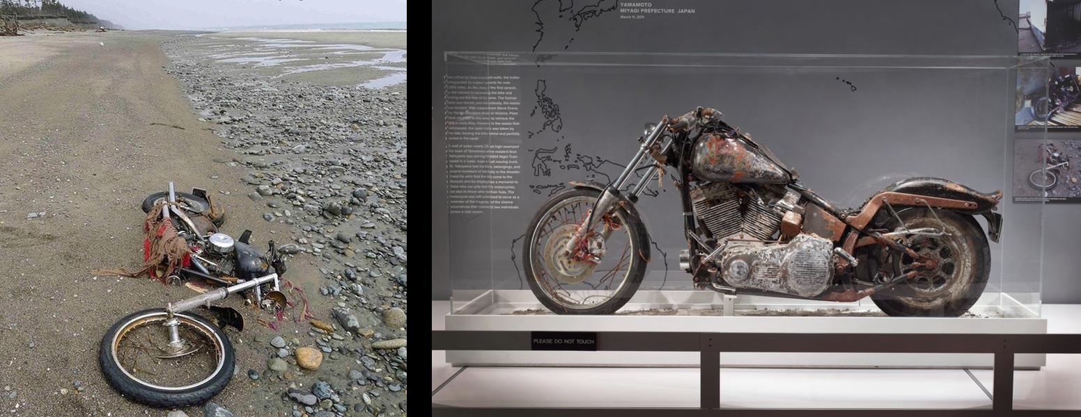 Harley Davidson Motorcycle tsunami debris