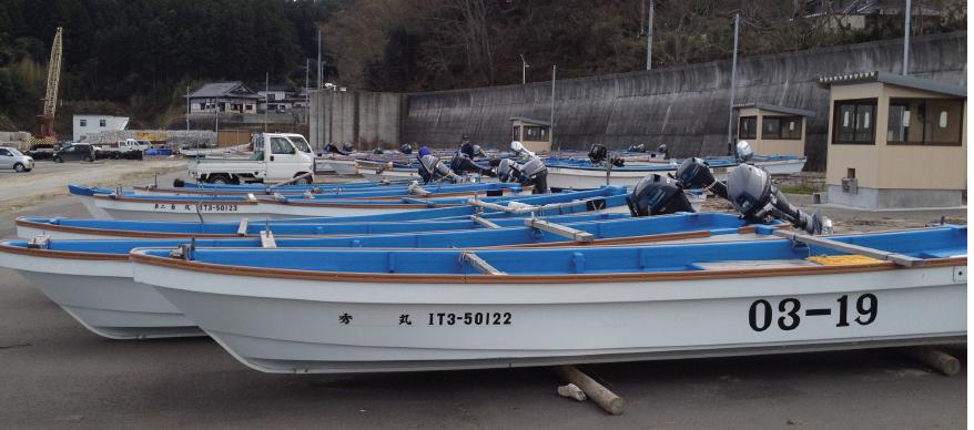 Image of panga boats