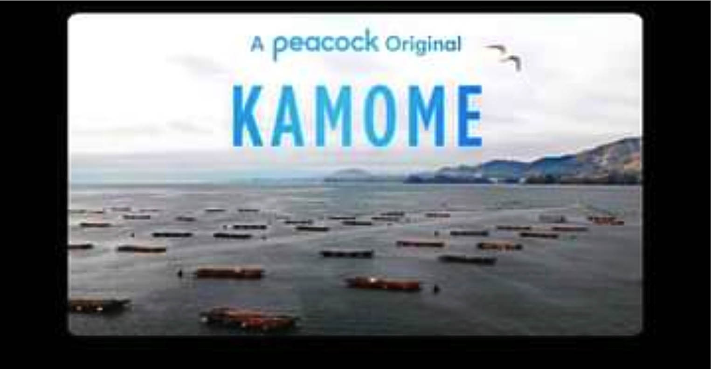 Kamome Documentary Video