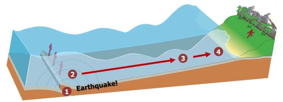 The creation of a tsunami graphic