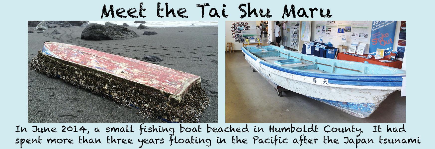 Meet the Tai Shu Maru